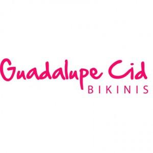logo guadalupe cid